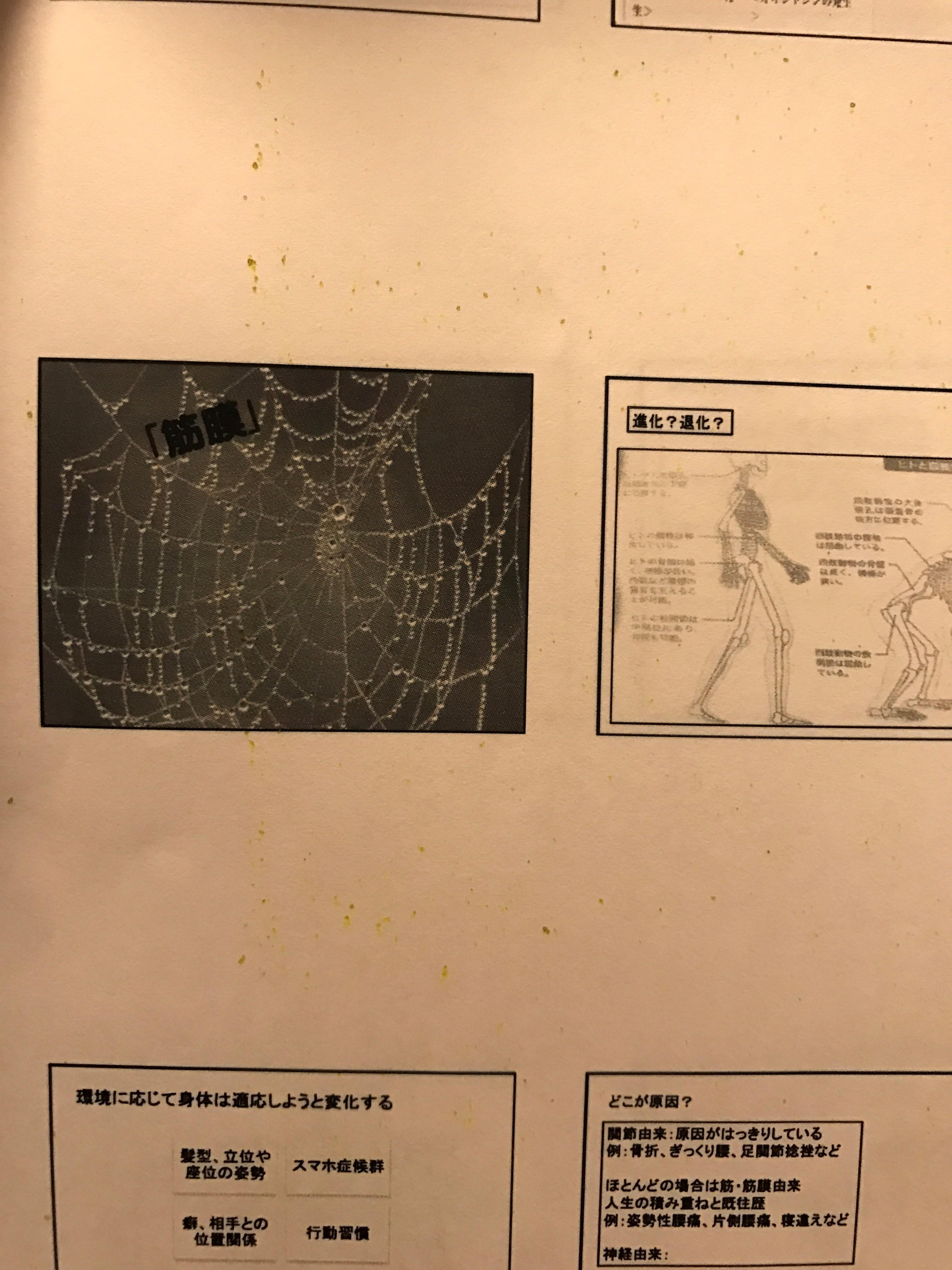 松田師岡2IMG_0523
