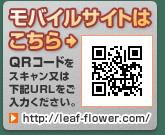 banner_qr