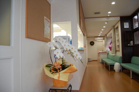 小児科中村医院