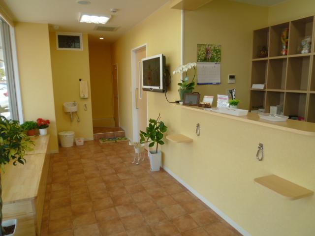 待合室奥には、わんちゃんの水飲み場を用意しております。その奥のトイレはわんちゃんを連れて入れることもできます。