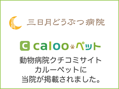 bn_caloopet_131783